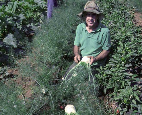 carlo-noro-agricoltura